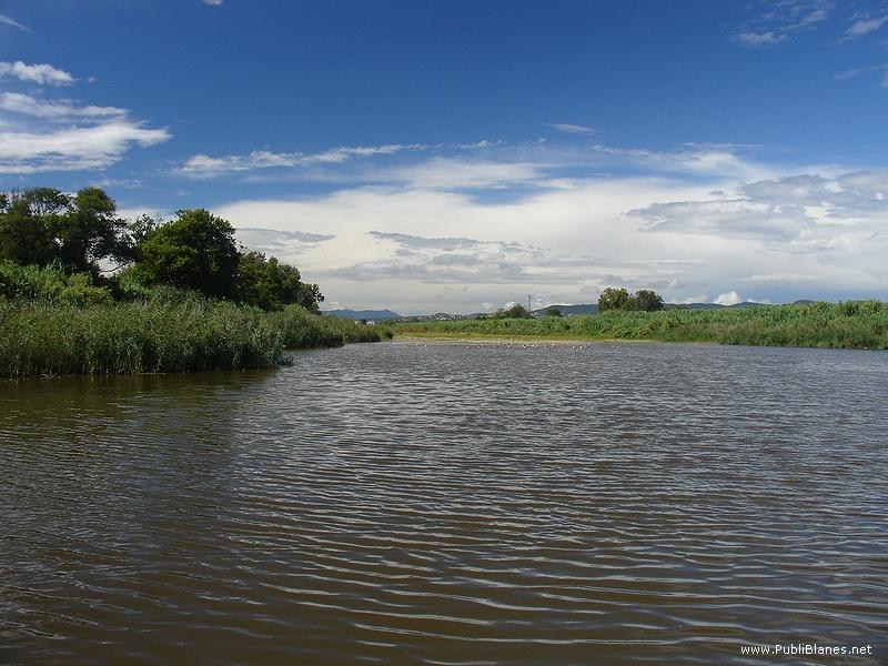 Lupiáñez demana avalar científicament qualsevol solució per la platja de s'Abanell