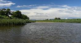 Tordera i Blanes defensen la protecció del delta de la Tordera