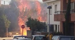 Ensurt a PLF per un petit incendi provocat per un petard