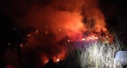 Els petards provoquen dos petits incendis forestals a Blanes
