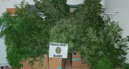 Tres detinguts a Blanes acusats de tràfic de drogues