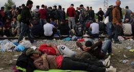 PLF vol acollir 5 famílies de refugiats