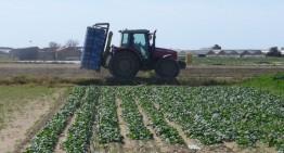 Compromís per impulsar el sector agroalimentari i la gestió forestal