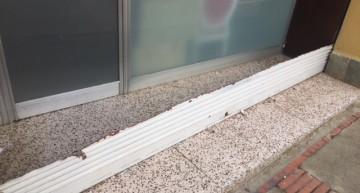 persiana tallada