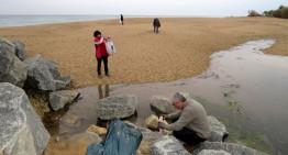 Recullen 20 quilos de residus de les platges de Blanes