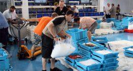 L'excomptable dels pescadors de Blanes sota sospita