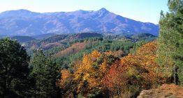 El Grup de Muntanya se'n va al Montseny