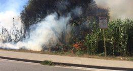 Baixen els incendis forestals a la comarca