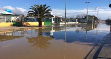 Camí de la Pomereda inundat. RP