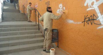 Malgrat ajudarà als particulars a repintar les parets amb grafits