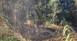 Incendi a la vora del riu Tordera