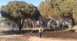 L'Ajuntament treu a licitació les franges perimetrals de manteniment forestal a Mas Reixach i Mas Carbó