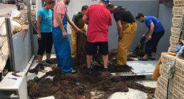 Retiren a la costa de Blanes mitja tona d'una xarxa de pesca abandonada