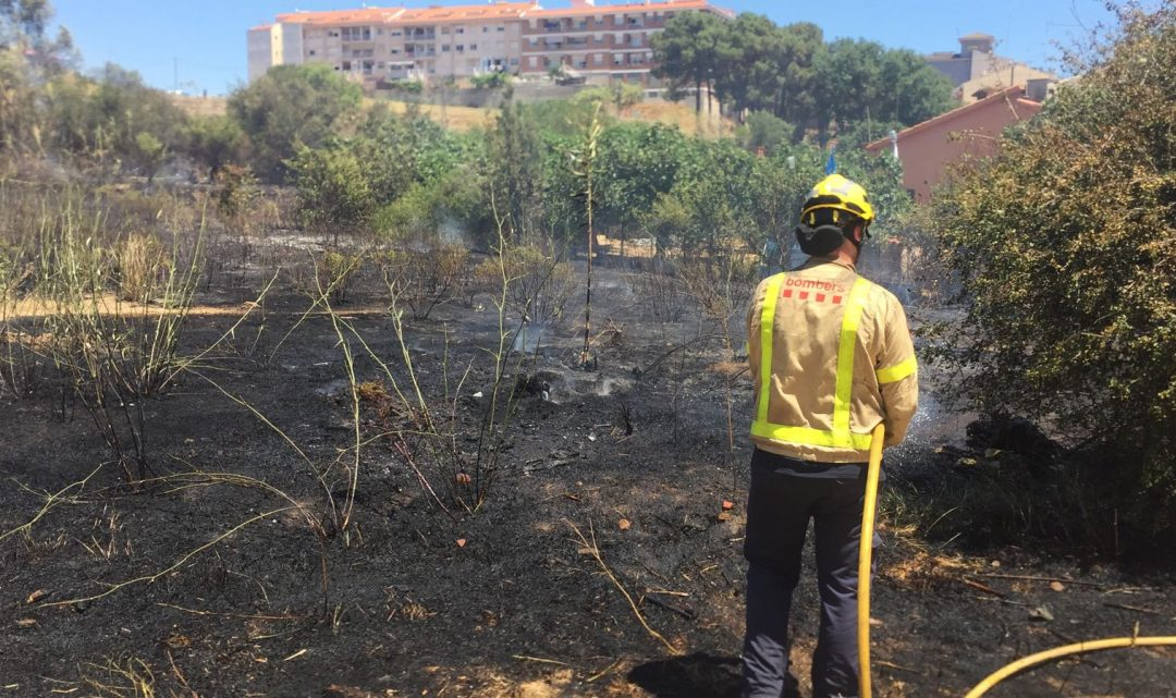 Entra en vigor la prohibició de fer foc prop de zones boscoses