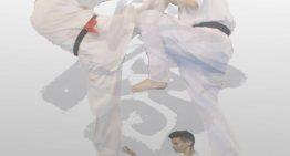 Santa Susanna acull els campionats espanyol i europeu de karate Kyokushinkai