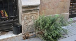 Malgrat posa en marxa una nova campanya de recollida d'arbres de Nadal
