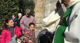 La Festa de Sant Antoni arriba aquest diumenge a Malgrat
