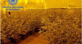 Desarticulen una banda de tràfic de drogues que tenia un dels immobles a Pineda