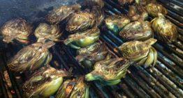 1.000 quilos de carxofes a la brasa a Pineda per batre un Rècord Guinness