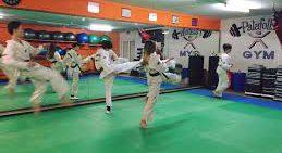 Podis europeus pel Taekwondo palafollenc