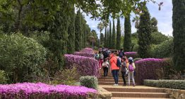 El Jardí Botànic Marimurtra de Blanes torna a superar les seves millors xifres de visitants aquest 2018