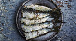 Blanes celebra durant tot l'abril el Mes del Peix Blau