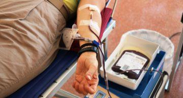 Una 12a de places lliures per donar sang demà a Palafolls