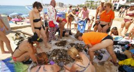 Recullen més de 100 quilos de deixalles del fons marí de Blanes