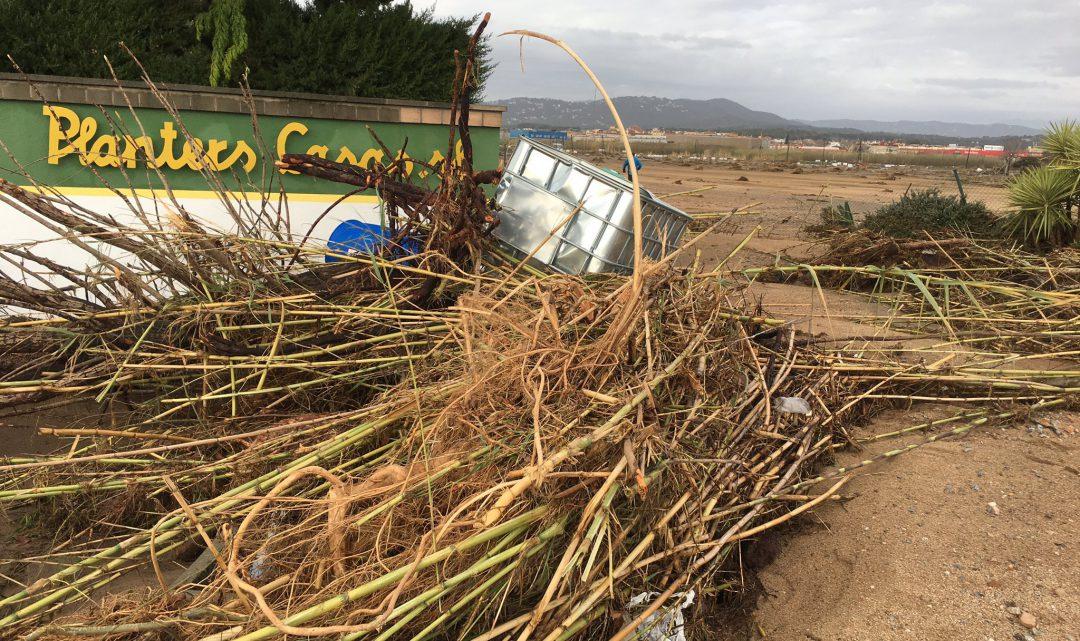 Nou pas perquè el sector agrícola rebi els ajuts de la Generalitat pels danys del Gloria