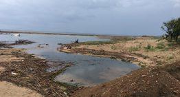 S'anul·len les visites ornitològiques de Malgrat al delta de la Tordera