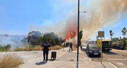 Un petit incendi crema 2800m2 de matolls a Blanes