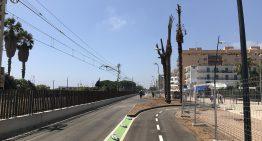 L'Ajuntament de Malgrat preveu començar plantar la jardineria del Passeig Marítim al novembre