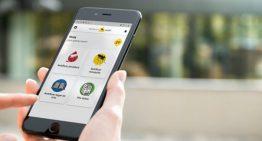 L'app sobre el mosquit tigre, eficaç en l'estudi de l'insecte a Palafolls