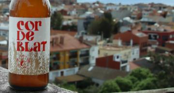 Cervesa solidària amb la Fundació Aspronis