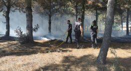 L'Ajuntament i les ADF demanen precaució davant el risc d'incendis en aquesta revetlla