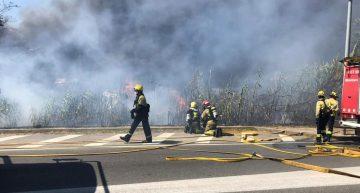Se sospita que el foc d'ahir es va originar al voral de la carretera